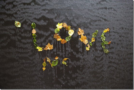 Love leaves_1280_for_Web